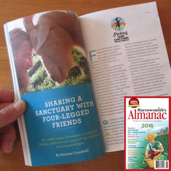 Piebird in Harrowsmith's Almanac 2016